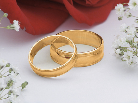 Valentine's gold rings and a rose
